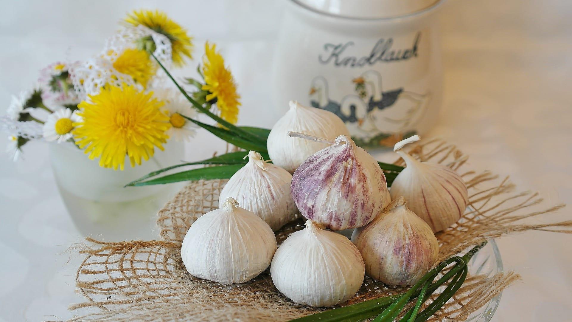 15+ Manfaat Bawang Putih Tunggal dan Madu yang Luar Biasa